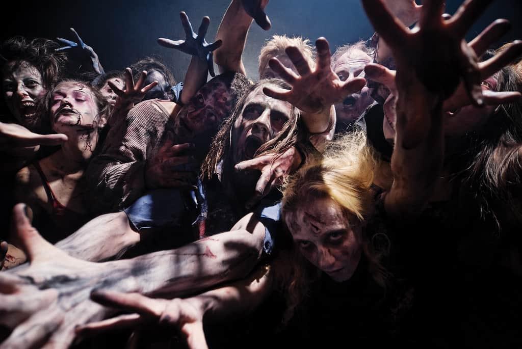 zombie-joes